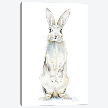 Cute Rabbit Canvas Print #PPI422} by Patricia Pinto Canvas Wall Art