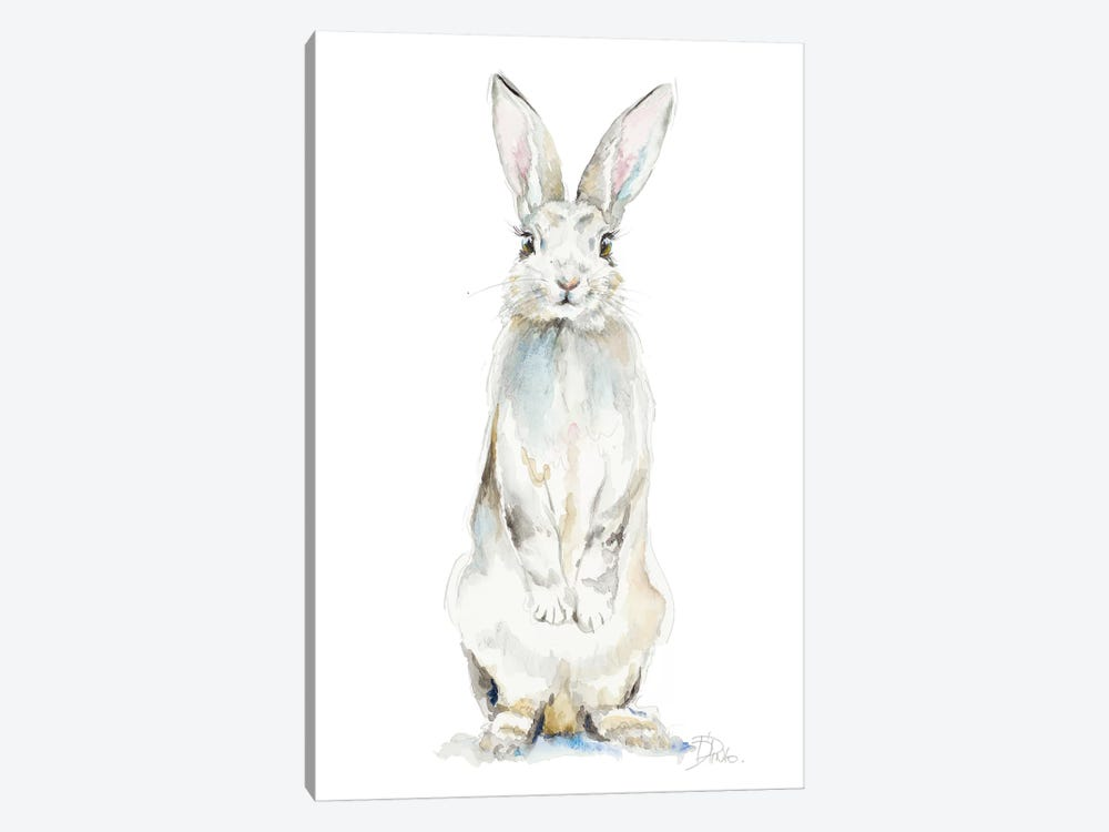 Cute Rabbit by Patricia Pinto 1-piece Canvas Wall Art