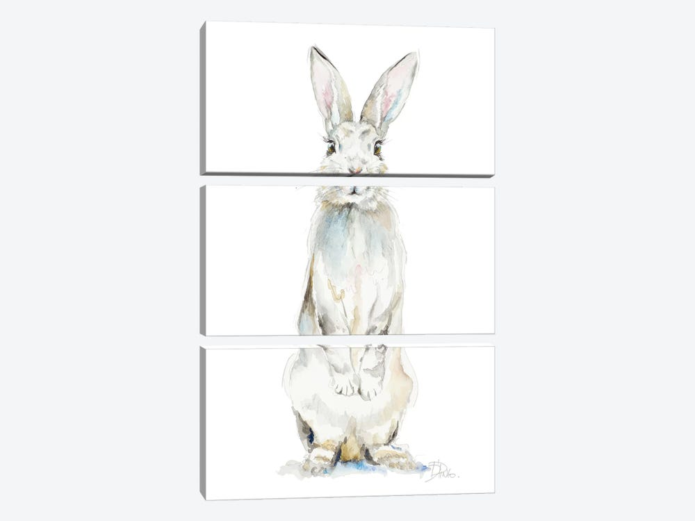 Cute Rabbit by Patricia Pinto 3-piece Canvas Wall Art