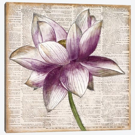 Defined Lotus I Canvas Print #PPI424} by Patricia Pinto Art Print