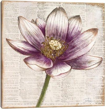 Defined Lotus II Canvas Art Print