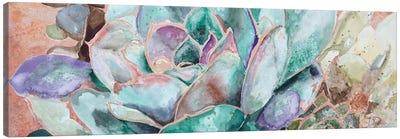 Desert Flower On Terra Cotta Canvas Art Print