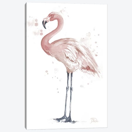 Flamingo Stand I Canvas Print #PPI442} by Patricia Pinto Canvas Artwork