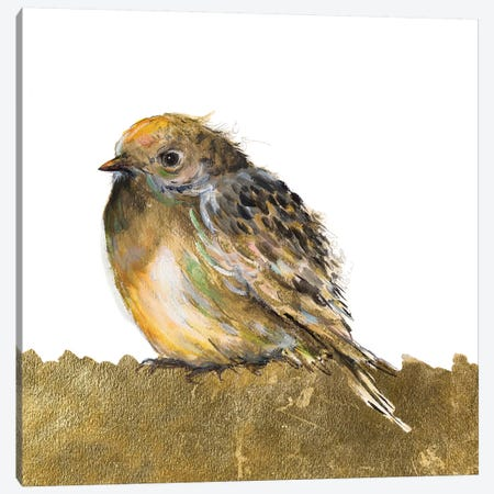 Gold Bird Canvas Print #PPI453} by Patricia Pinto Art Print