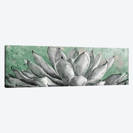 Gray Agave On Green Canvas Print #PPI457} by Patricia Pinto Canvas Art
