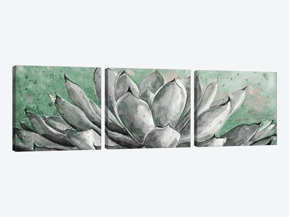 Gray Agave On Green by Patricia Pinto 3-piece Canvas Wall Art