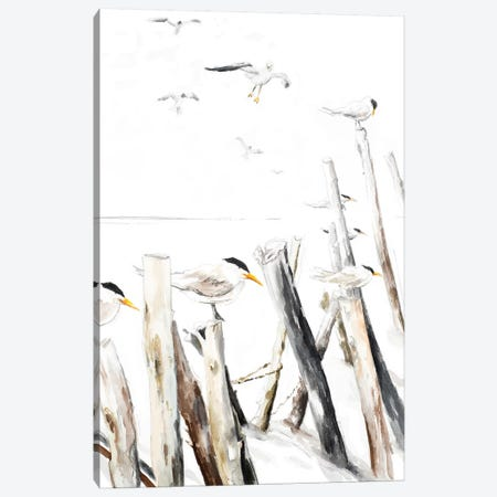 Gull Point Canvas Print #PPI458} by Patricia Pinto Canvas Print