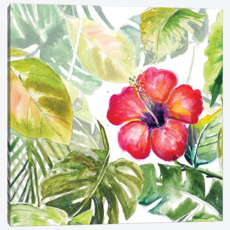Hibiscus On Selva Canvas Print #PPI462} by Patricia Pinto Canvas Art