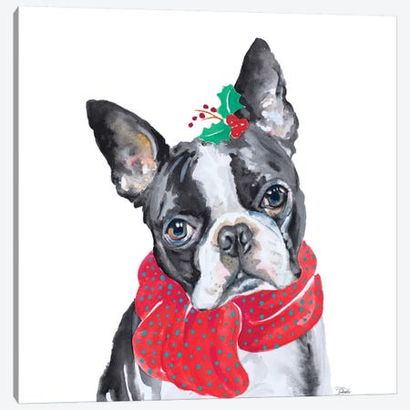 Holiday Dog II Canvas Print #PPI464} by Patricia Pinto Art Print