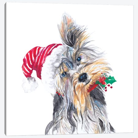 Holiday Dog III Canvas Print #PPI465} by Patricia Pinto Canvas Print