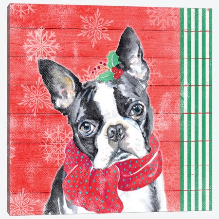 Holiday Puppy II Canvas Print #PPI468} by Patricia Pinto Canvas Art