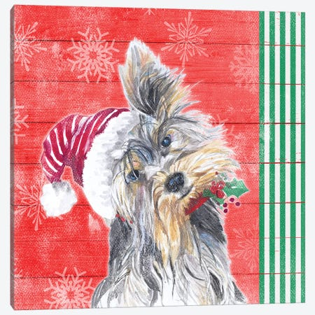 Holiday Puppy III Canvas Print #PPI469} by Patricia Pinto Canvas Artwork