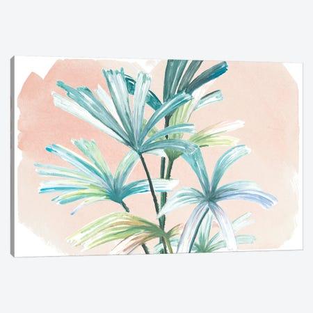 Jungle Gems On Blush I Canvas Print #PPI476} by Patricia Pinto Canvas Artwork