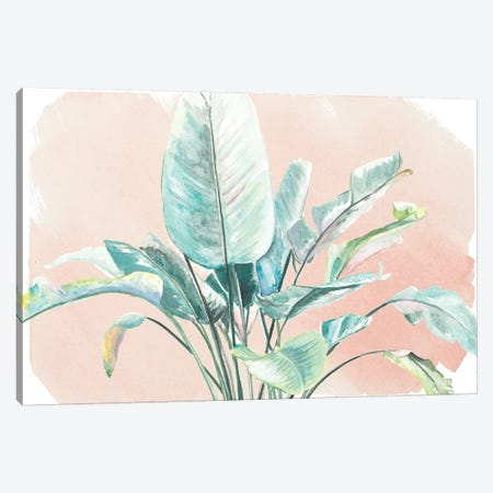 Jungle Gems On Blush II Canvas Print #PPI477} by Patricia Pinto Canvas Wall Art