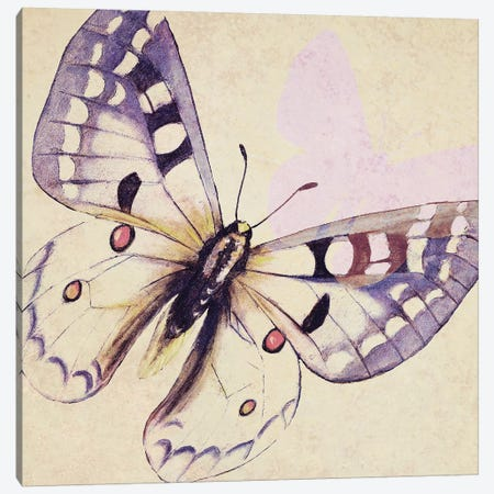 Lavender Butterfly On Cream Canvas Print #PPI479} by Patricia Pinto Art Print