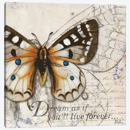 Living Your Dreams I Canvas Print #PPI483} by Patricia Pinto Canvas Art