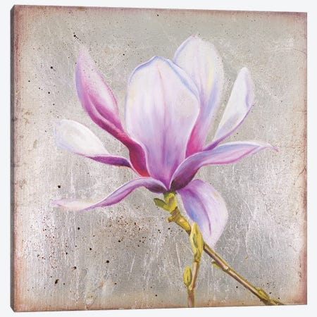 Magnolia On Silver Leaf II Canvas Print #PPI489} by Patricia Pinto Canvas Wall Art