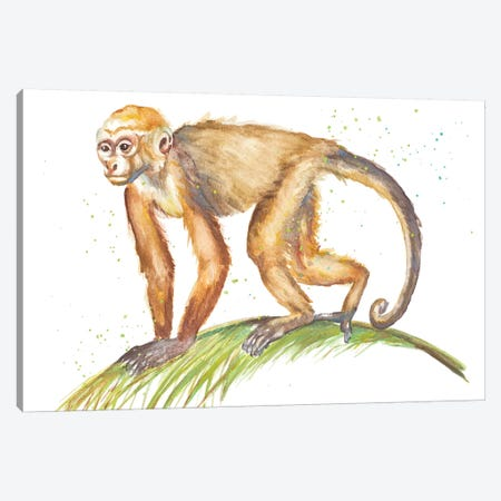 Monkeys In The Jungle II Canvas Print #PPI495} by Patricia Pinto Canvas Art