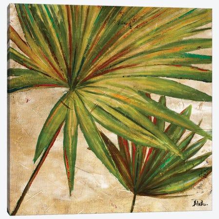 New Palmera Take Two II Canvas Print #PPI508} by Patricia Pinto Canvas Print