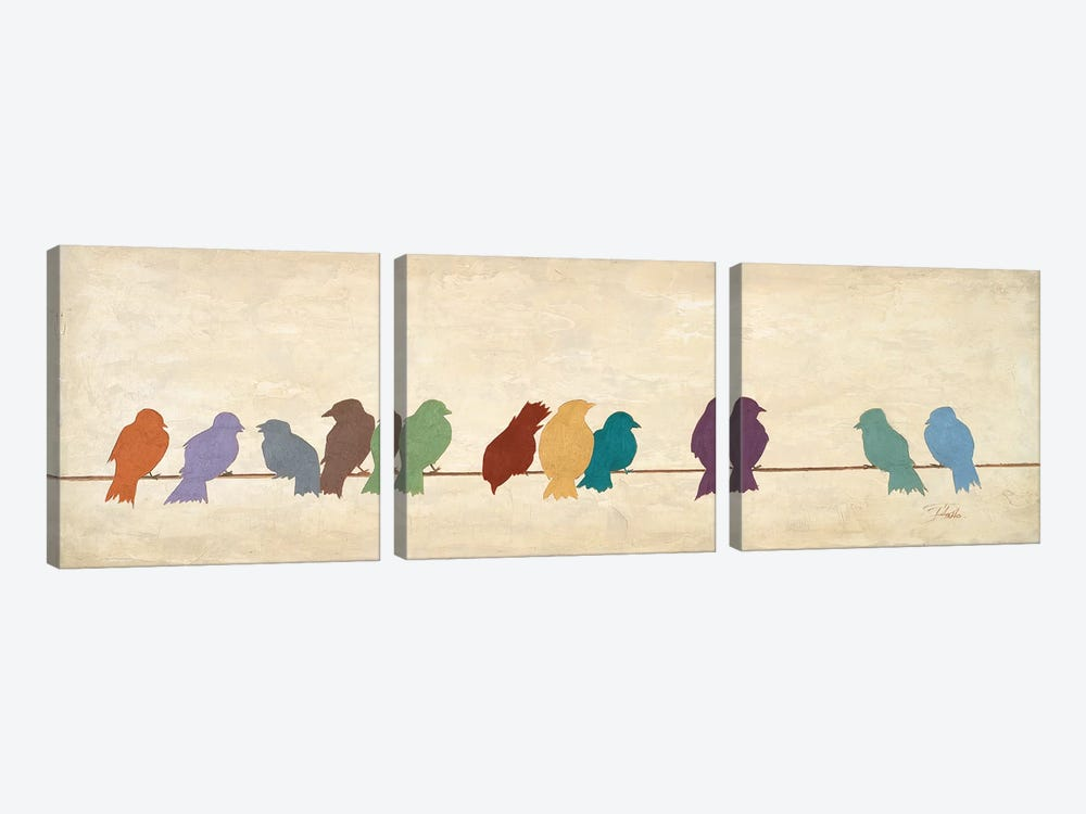 Birds Meeting  (assorted colors) by Patricia Pinto 3-piece Canvas Print