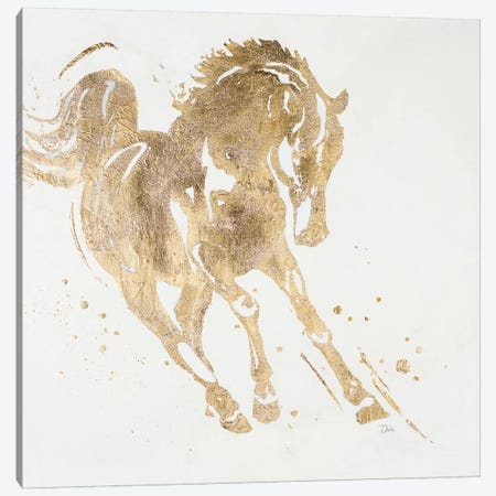 Spirit Horse Gold Canvas Print #PPI555} by Patricia Pinto Art Print