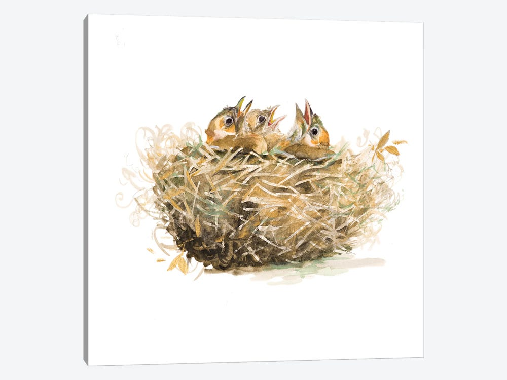 The Nest by Patricia Pinto 1-piece Canvas Artwork