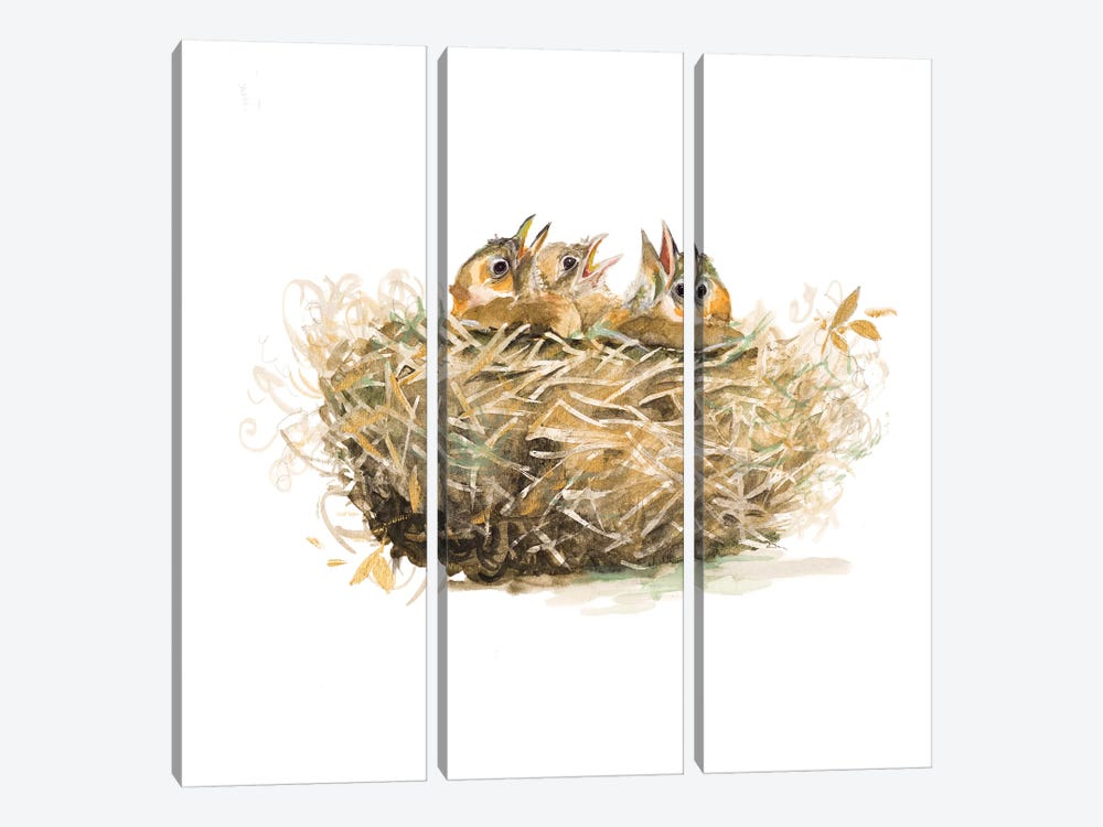 The Nest by Patricia Pinto 3-piece Canvas Artwork