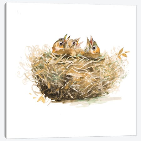 The Nest Canvas Print #PPI569} by Patricia Pinto Art Print