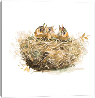 The Nest Canvas Art Print