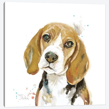 Watercolor Beagle Canvas Print #PPI579} by Patricia Pinto Canvas Artwork