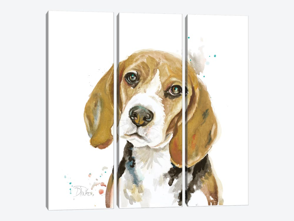Watercolor Beagle by Patricia Pinto 3-piece Canvas Art Print