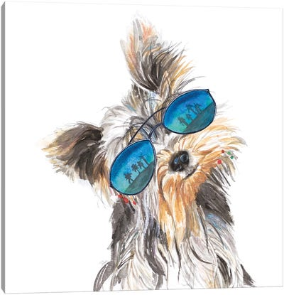 Yorkie With Shades Canvas Art Print