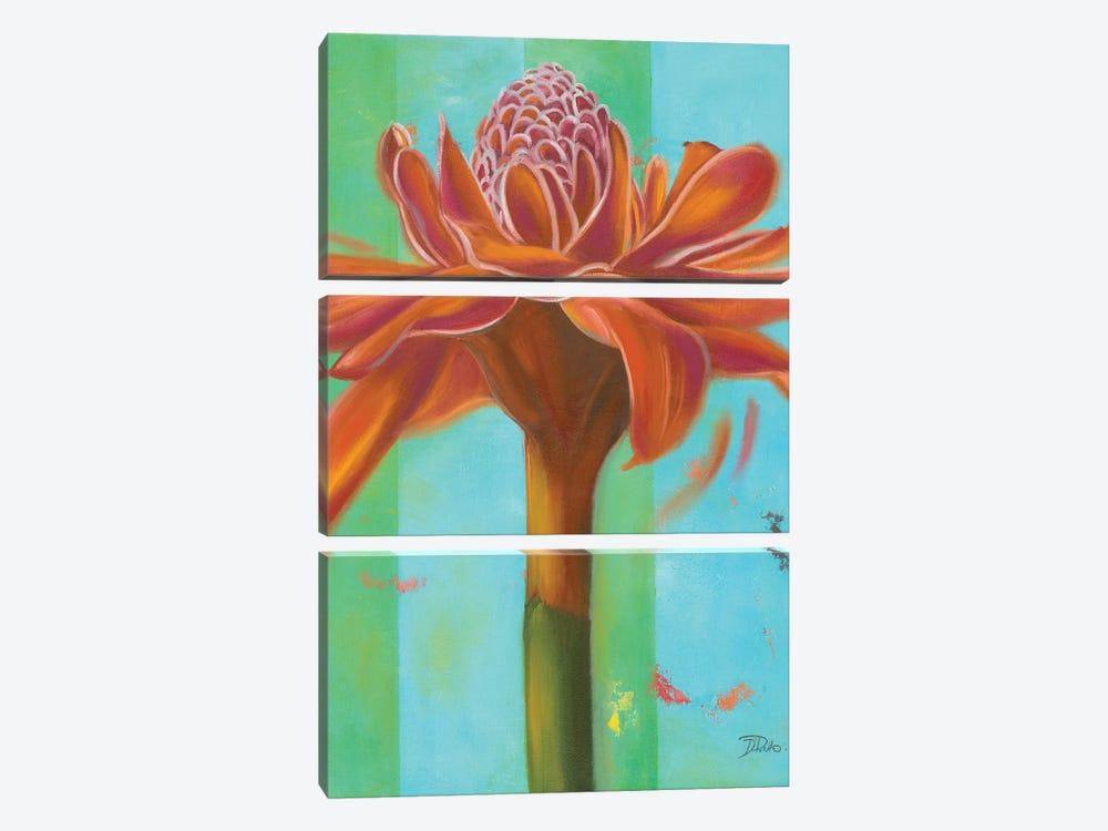 Exotica III by Patricia Pinto 3-piece Art Print