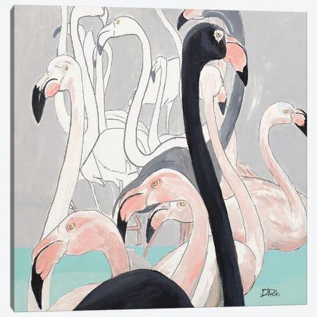 Flamazing I Canvas Print #PPI604} by Patricia Pinto Art Print