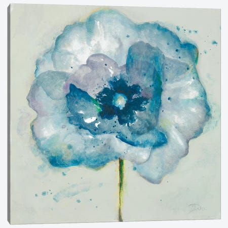 Flower in Blue II Canvas Print #PPI609} by Patricia Pinto Canvas Art