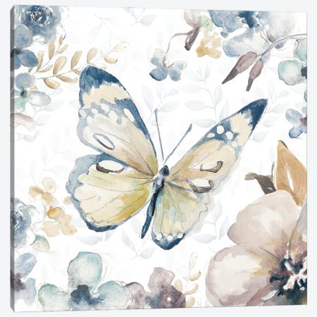 Butterfly Beauty II Canvas Print #PPI638} by Patricia Pinto Art Print