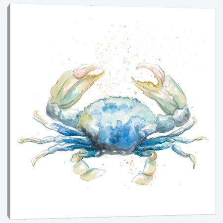 Cangrejo Azul Square Canvas Print #PPI639} by Patricia Pinto Art Print