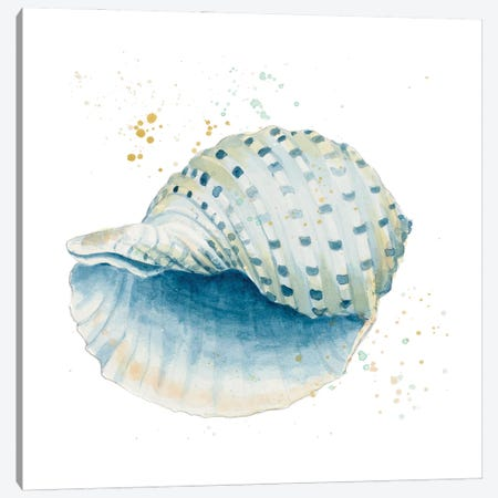 Caracol Azul Square Canvas Print #PPI640} by Patricia Pinto Canvas Wall Art