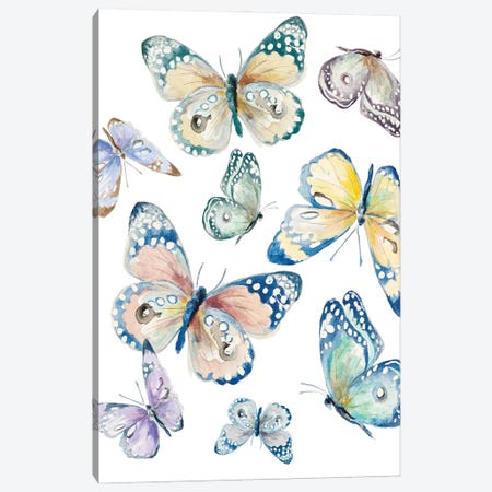 Colorful Isolated Butterflies Canvas Print #PPI641} by Patricia Pinto Canvas Art