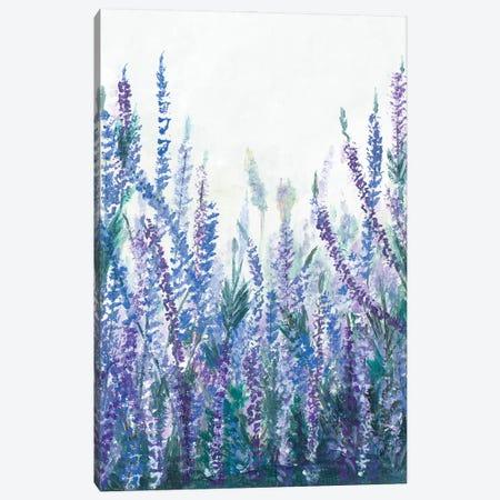 Lavender Garden II Canvas Print #PPI661} by Patricia Pinto Canvas Artwork