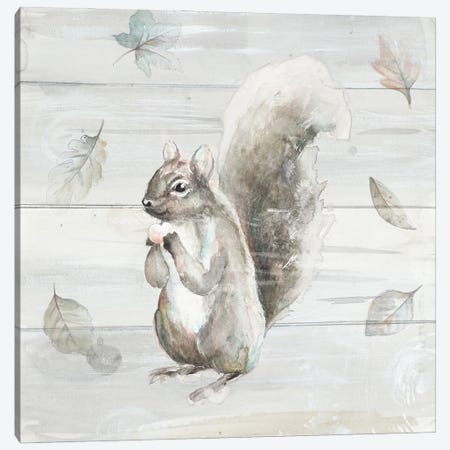 Neutral Squirrel Canvas Print #PPI662} by Patricia Pinto Canvas Art