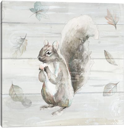 Neutral Squirrel Canvas Art Print