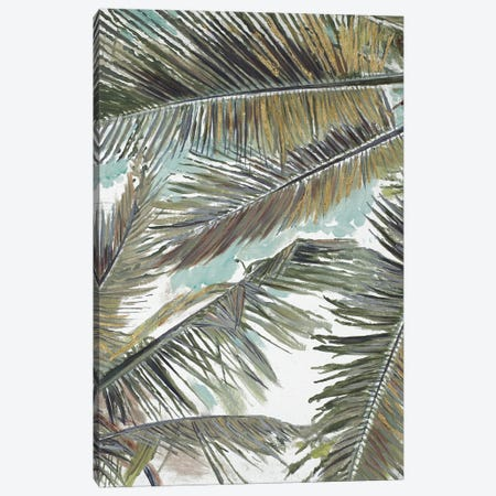 Palms in the Sky Canvas Print #PPI663} by Patricia Pinto Canvas Wall Art