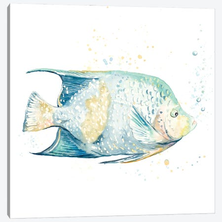 Pescado Azul Square Canvas Print #PPI664} by Patricia Pinto Canvas Print