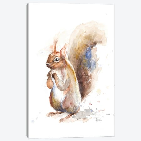 Squirrel Canvas Print #PPI673} by Patricia Pinto Canvas Print