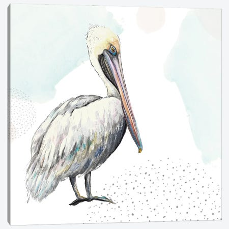 Turquoise Pelican Canvas Print #PPI678} by Patricia Pinto Art Print