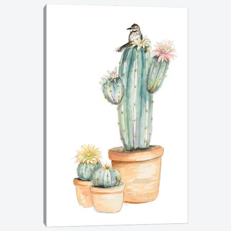 Bird On Flower Cactus Canvas Print #PPI683} by Patricia Pinto Canvas Wall Art