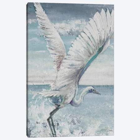 Great Egret Flying 3-Piece Canvas #PPI699} by Patricia Pinto Art Print