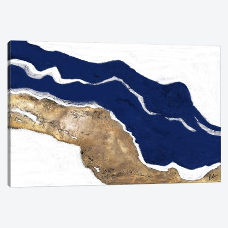 Navy and Gold Tierra I Canvas Print #PPI710} by Patricia Pinto Canvas Art