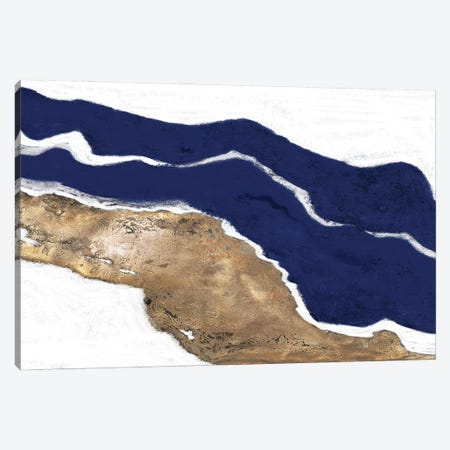 Navy and Gold Tierra I Canvas Print #PPI711} by Patricia Pinto Canvas Art